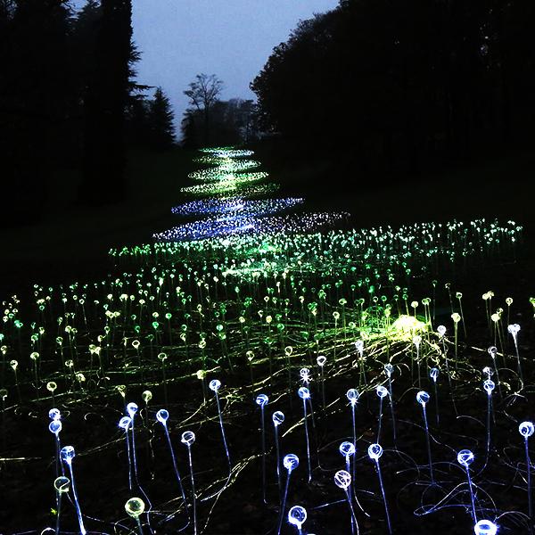 上海光纖螢火蟲燈